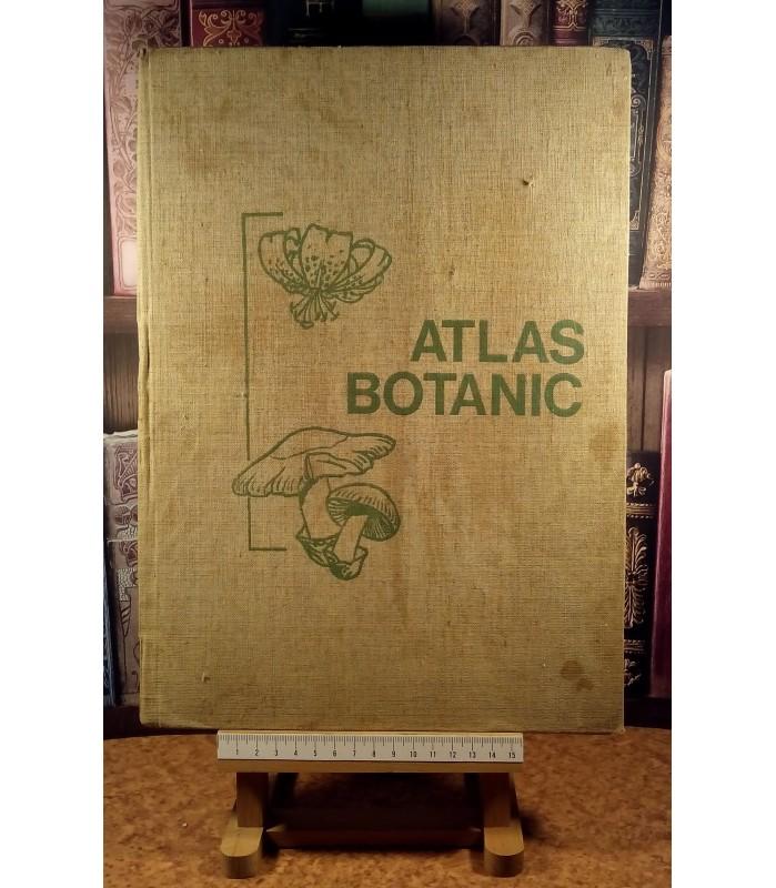 Lucia Popovici - Atlas botanic