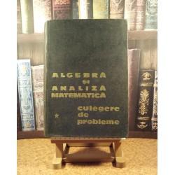 Algebra si analiza matematica Culegere de probleme Vol. I