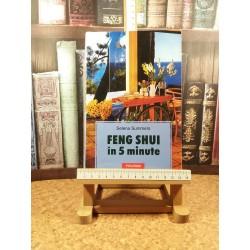 Selena Summers - Feng Shui in 5 minute
