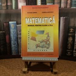 Tatiana Udrea - Matematica manual pentru clasa a VI a