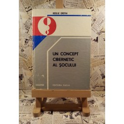 Nicolae Chiotan - Un concept cibernetic al socului