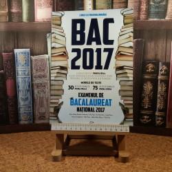 Adrian Nicolae Romonti - Limba si literatura romana Examenele de Bacalaureat national 2017 Profil Real