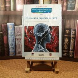 LaRousse VIII Creierul si organele de simt