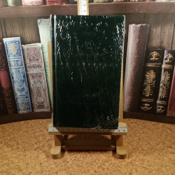 Irving Stone - Agonie si extaz Vol. II