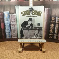 Colectia de aur Stan si Bra Nr. 6