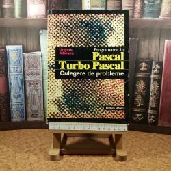 Grigore Albeanu - Programarea in Pascal Turbo Pascal Culegere de probleme