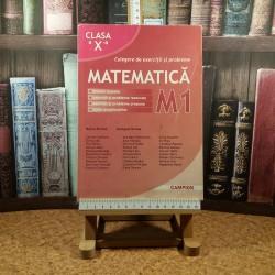 Marius Burtea - Matematica clasa a X a M1 culegere de exercitii si probleme