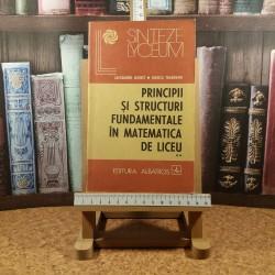 Alexandru Leonte - Principii si structuri fundamentale in matematica de liceu Vol. II