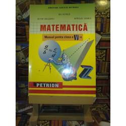 Ion Petrica - Matematica manual pentru clasa a VI a