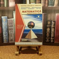 Gabriela Streinu Cercel - Matematica manual pentru clasa a X a Trunchi comun + Curriculum diferentiat